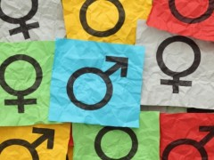 Nessuna connessione tra la Buona Scuola e 'teoria gender'