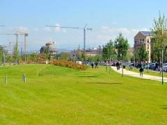 Parco del Prusst: bando o non bando serve una soluzione