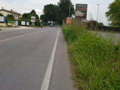 Cura delle strade: la denuncia del Pd della Terza Circoscrizione