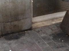 Degrado porticato commerciale di via Faliero: Comune e Agec intervengano