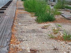 """Cantieri filovia: scaduto anche """"l'ultimo ultimatum"""" del Sindaco"""
