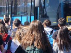 D'Arienzo: Bus affollati? Subito i sub-affidamenti dei servizi e un piano locale per scaglionare gli orari scolastici